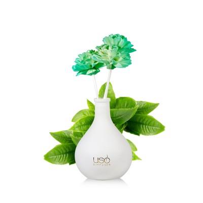Yeşil Çay Oda Parfümü