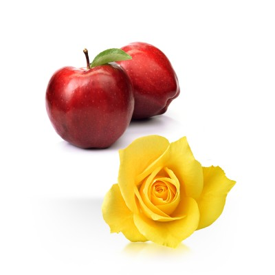 Apple & Rose
